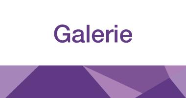 Sappi Galerie logo