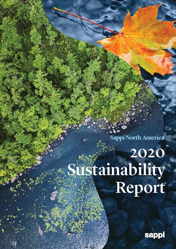 2020-SNA-SR-Cover-image.jpg