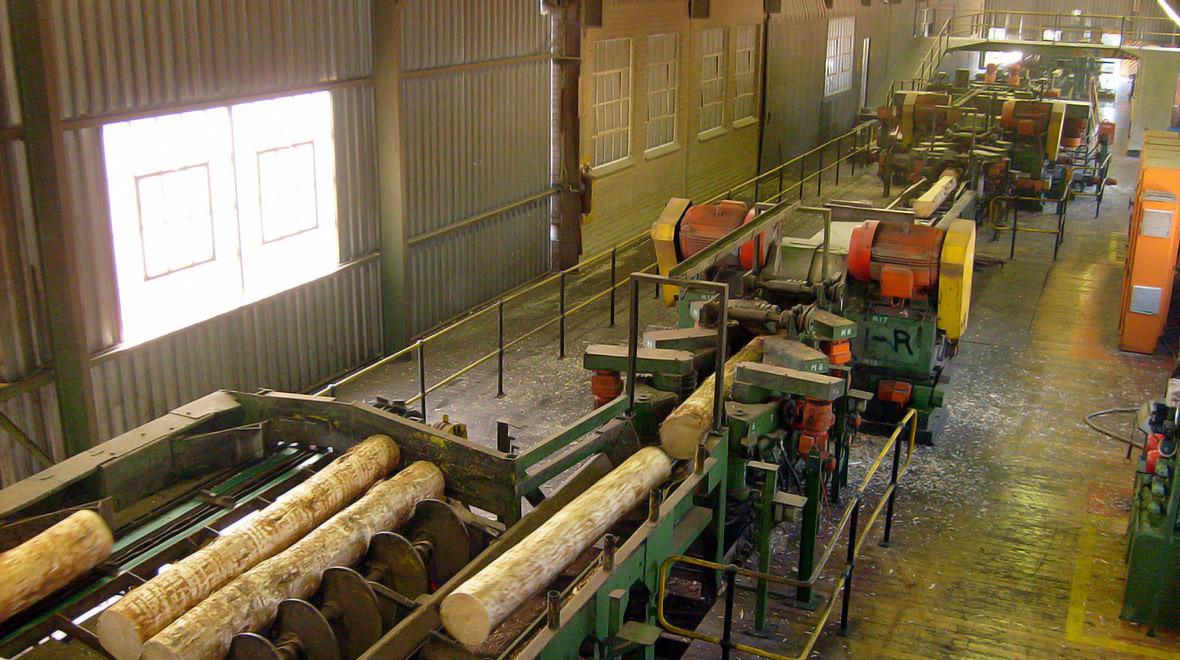 Lomati Sawmill | Sappi Global