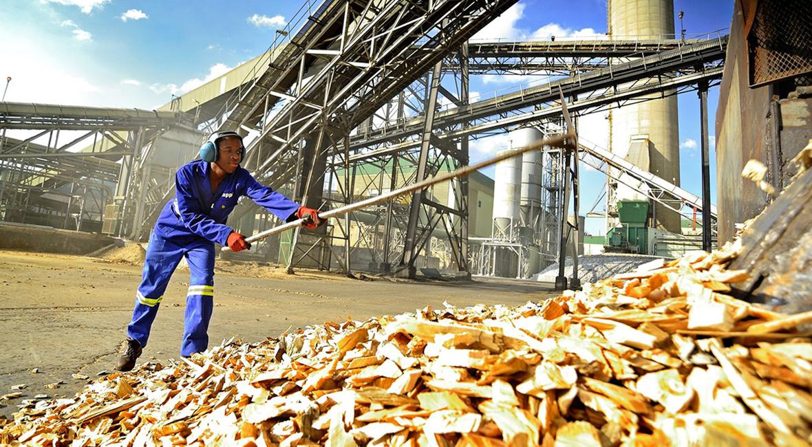 Ngodwana Mill   Sappi Global