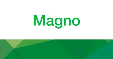 Sappi Magno logo