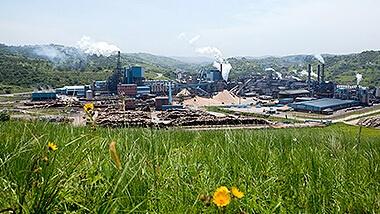 Saiccor Mill and wastewater