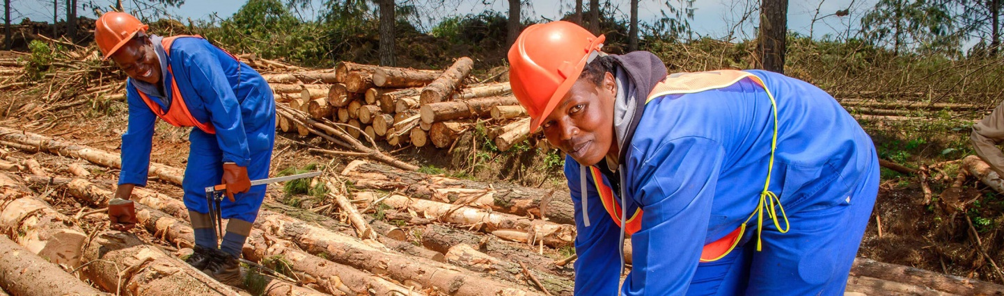 Expanding the role of women in Sappi Forests